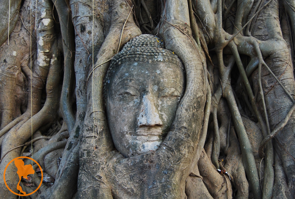 Wat Maha Tha - Ayutthaya